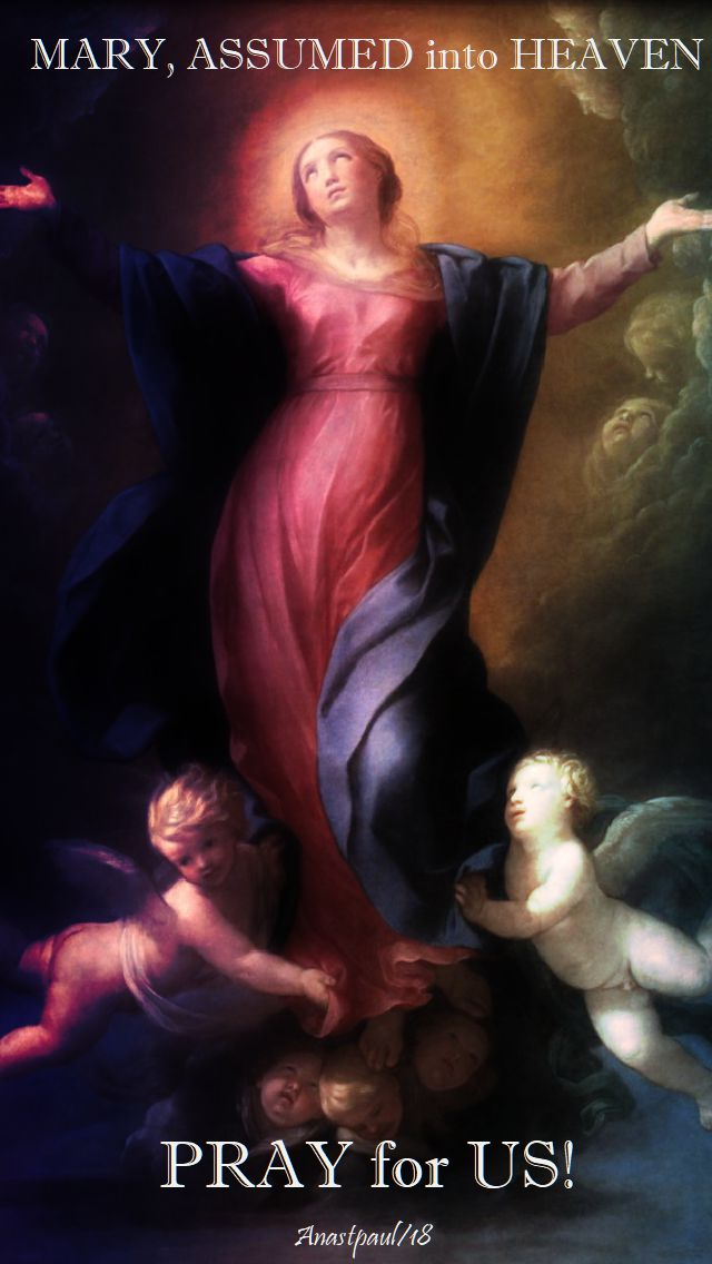 mary assumed into heaven pray for us - 19 aug 2018