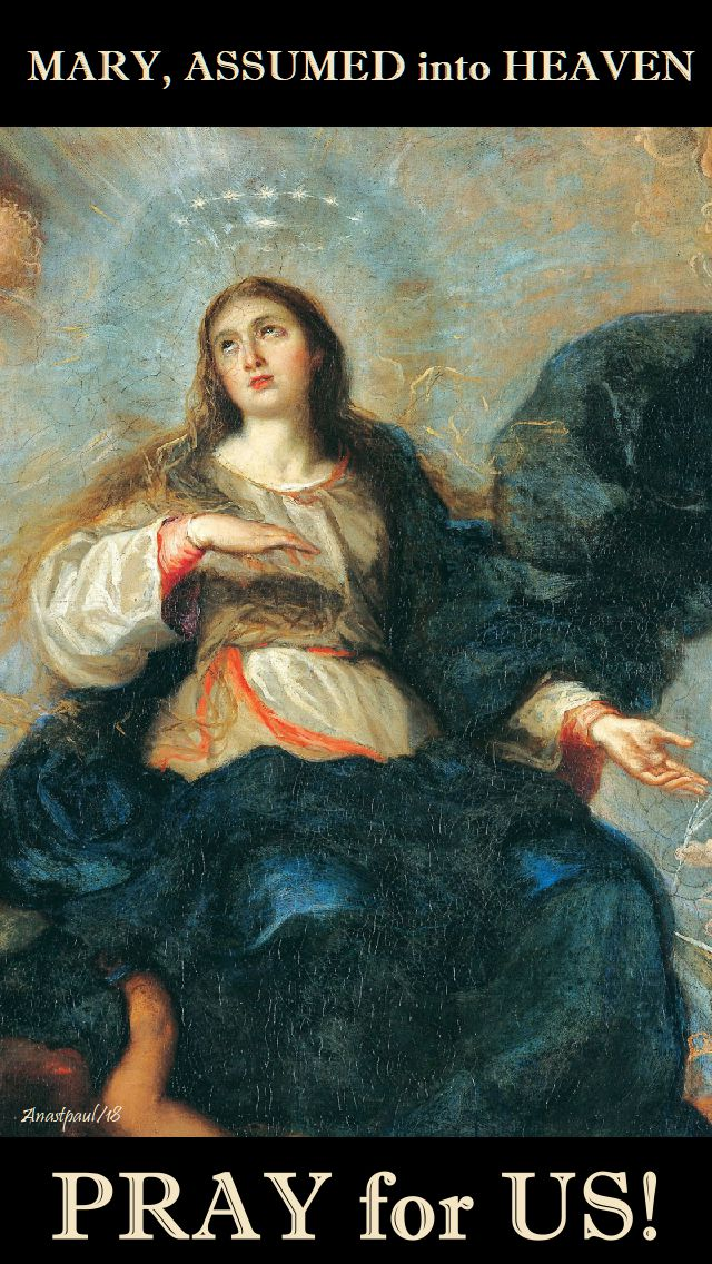 mary assumed into heaven - pray for us - 19 aug 2018