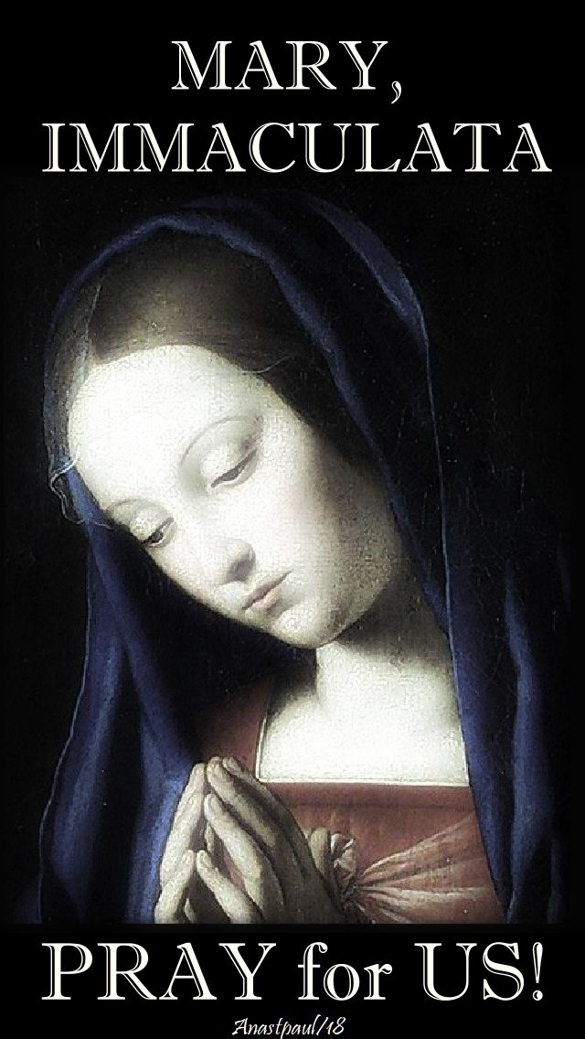 mary, immaculata - pray for us - 12 may 2018