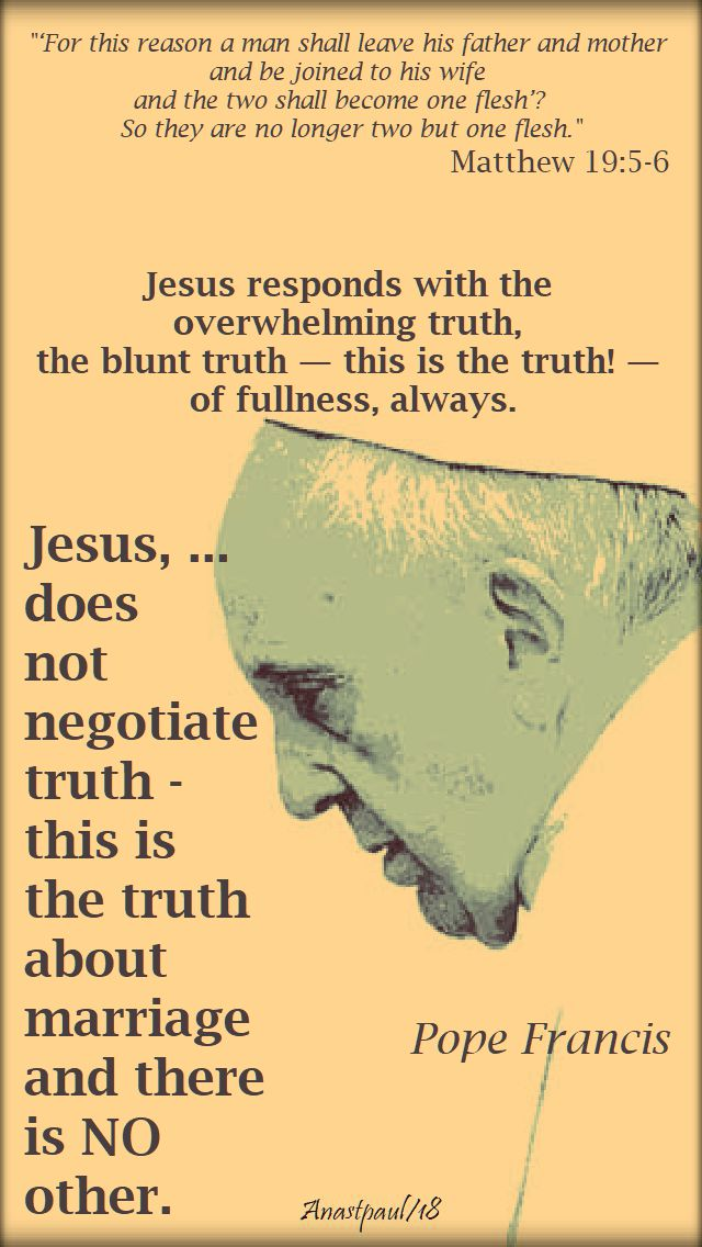 matthew 19 5 for this reason a man leaves - jesus responds with the truth - pope francis - 17 aug 2018