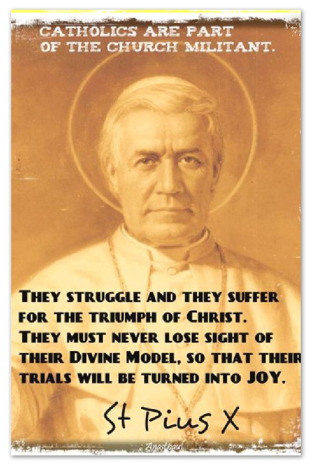 they-struggle-and-they-suffer-st-pope-pius-x-21 aug 2017