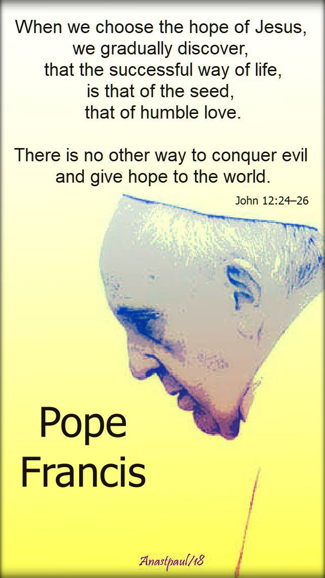 when we choose the hope of jesus - john 12 24-26 - pope francis - 10 aug 2018.jpg