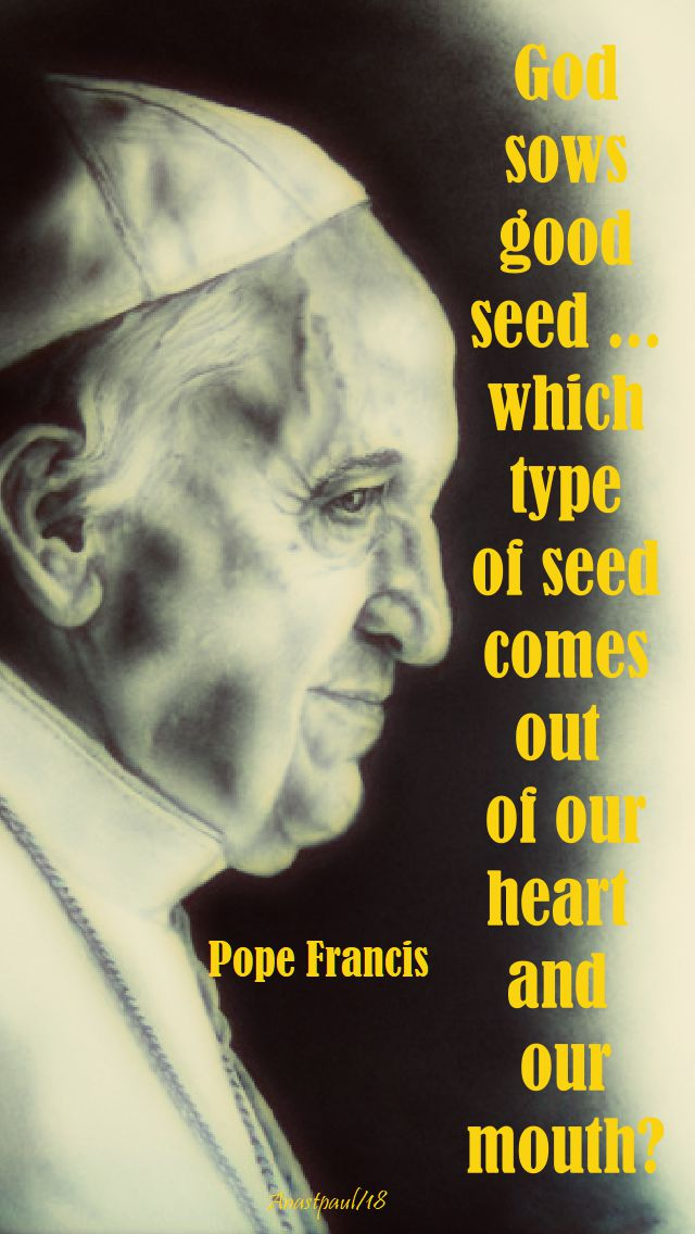 god sows goiod seed - pope francis - 22 sept 2018