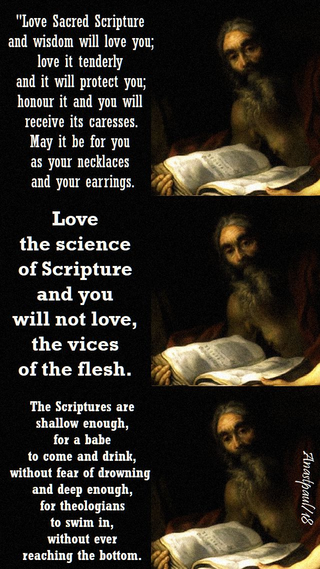 love sacred scripture - love the science of scriptue - the scriptures are shallow enough - st jerome - 30 sept 2018