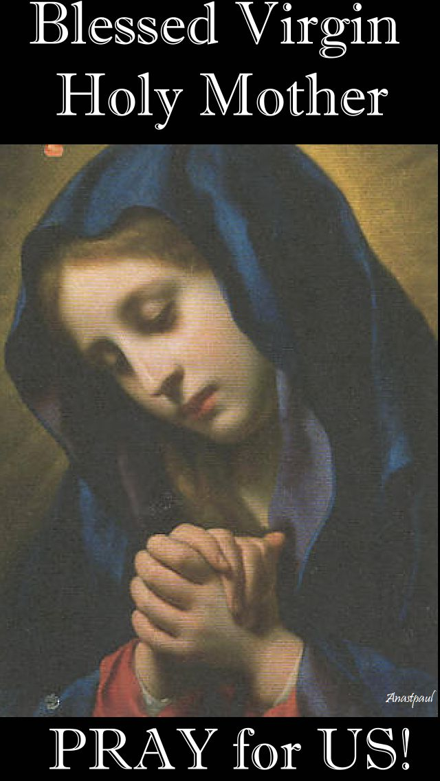 blessed virgin holy mother pray for us