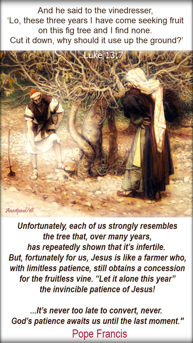 luke 13 7 - and he said to the vinedresser - unfortunately each of us strongly resembles the tree - pope francis 27 oct 2018