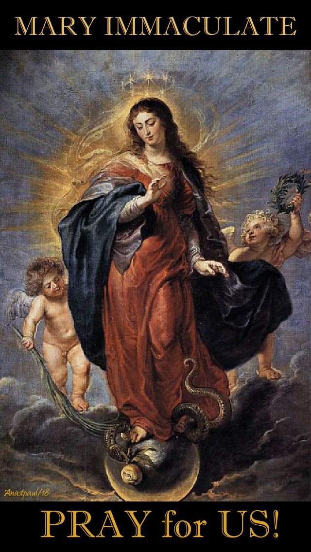 mary immaculate - pray for us - 4 mary 2018