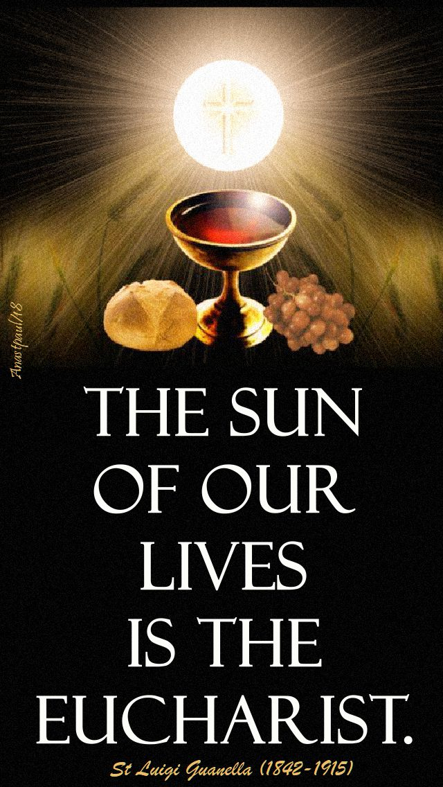 the sun of our lives - st luigi guanella - 24 oct 2018