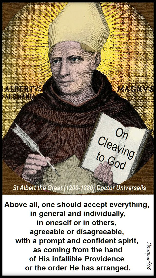above all, one should accept - st albert the great - 15 nov 2018