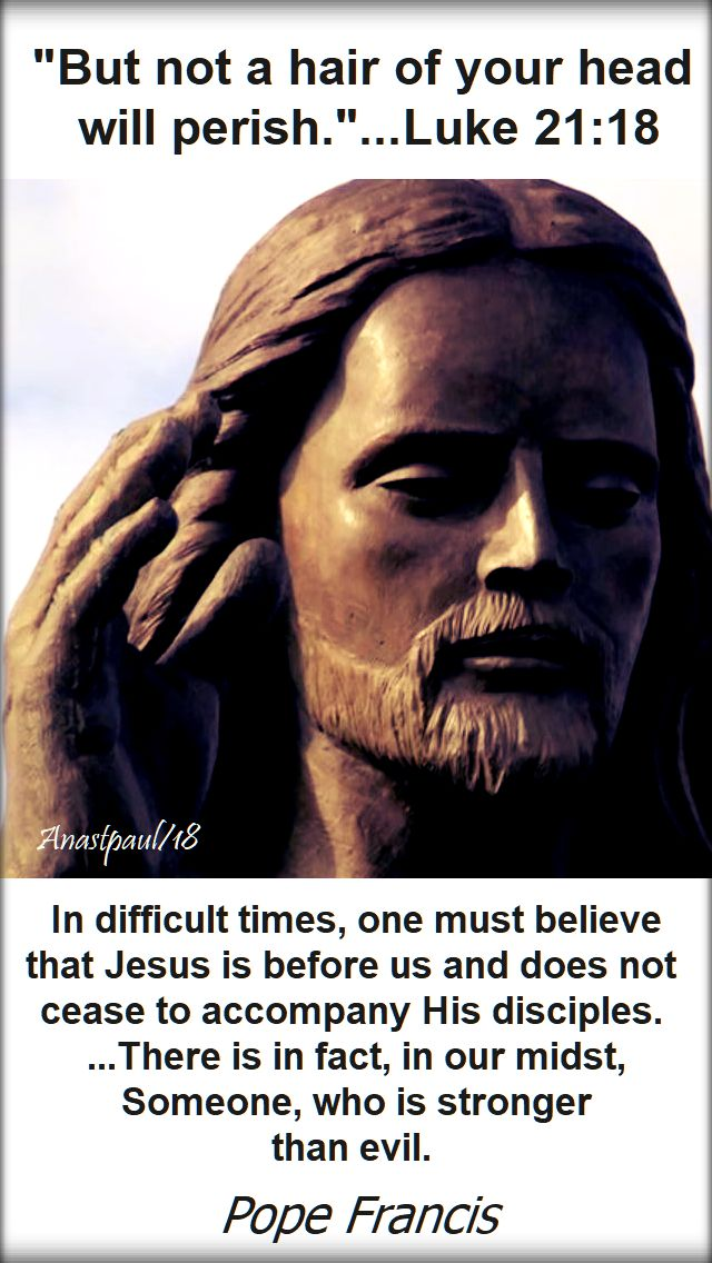 but not a hair of your head - luke 21 18-in difficult times - pope fancis 28 nov 2018