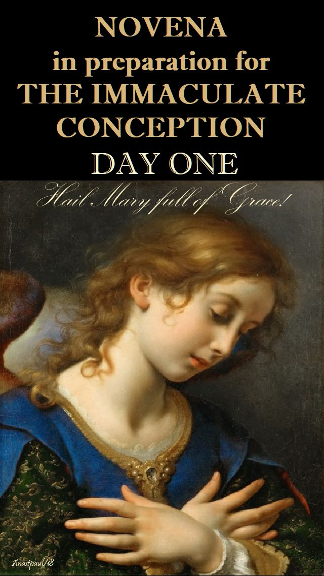 DAY ONE - IMM CONCEPTION NOVENA - HAIL MARY