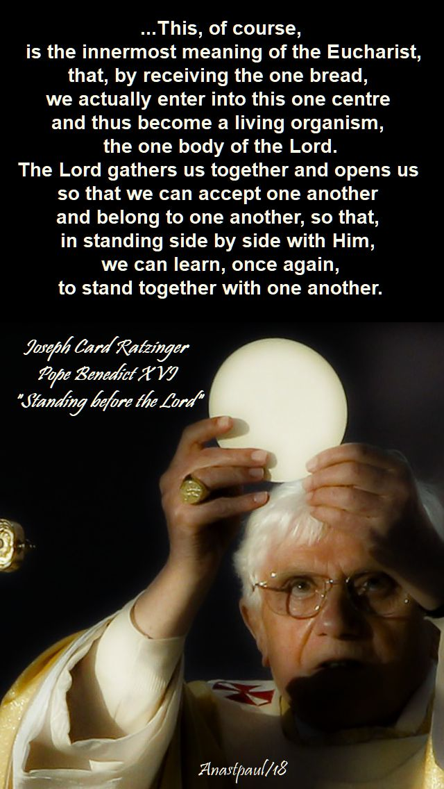 this of course is the innermost meaning of the eucharist - sun reflection - 11 nov 2018