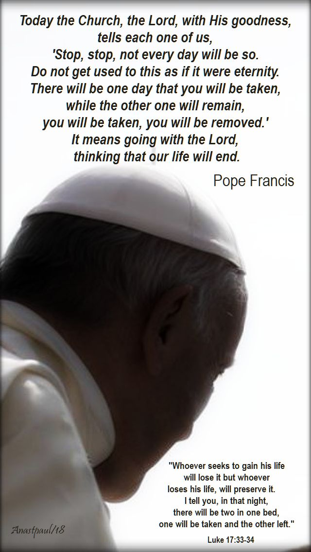 whoever seeks to gain his life - today the church, the lord - pope francis - 16 nov 2018