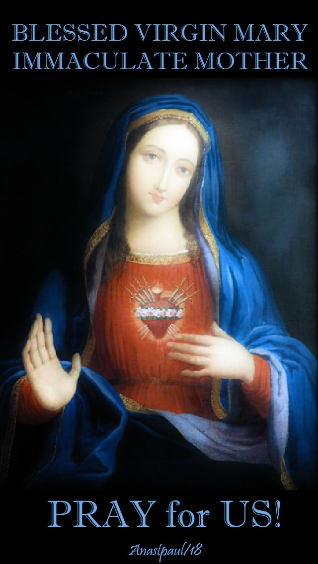blessed virgin mary immaculate mother - pray for us - 2 sept 2018