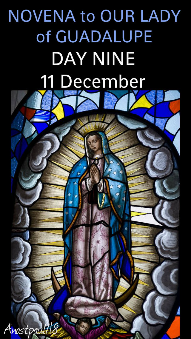 day nine - novena our lady of guadalupe 11 dec 2018