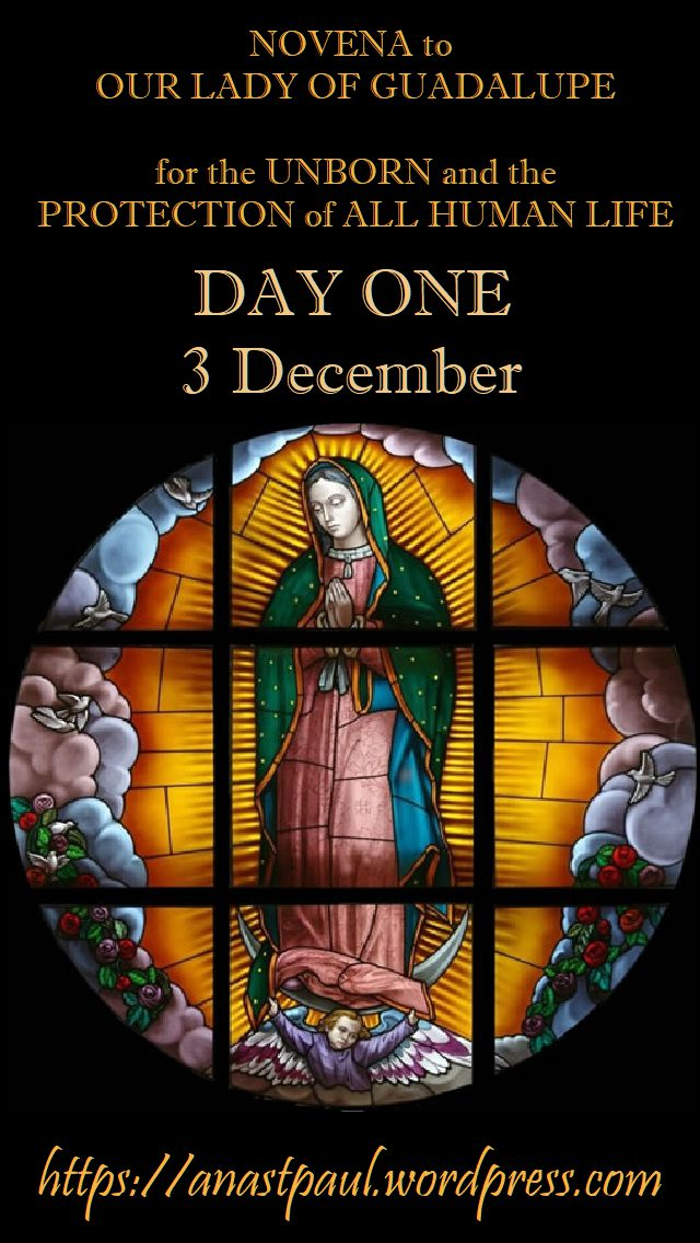 DAY ONE - NOVENA OUR LADY OF GUADALUPE FOR THE UNBORN HUMAN LIFE 3dec2018