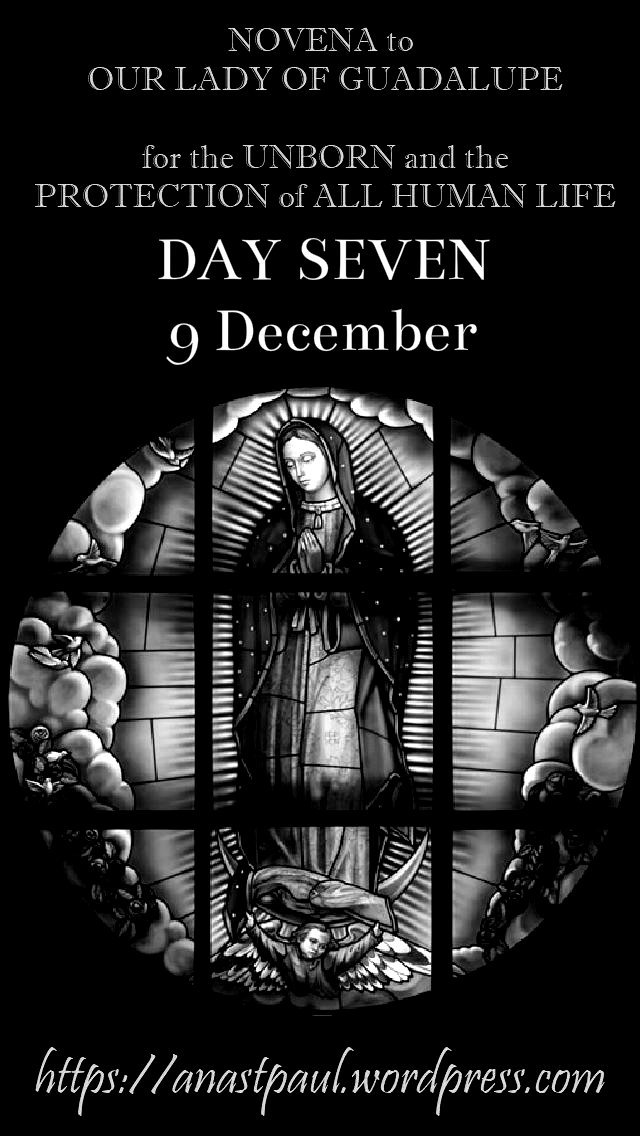 day seven NOVENA OUR LADY OF GUADALUPE FOR THE UNBORN HUMAN LIFE 9dec2018