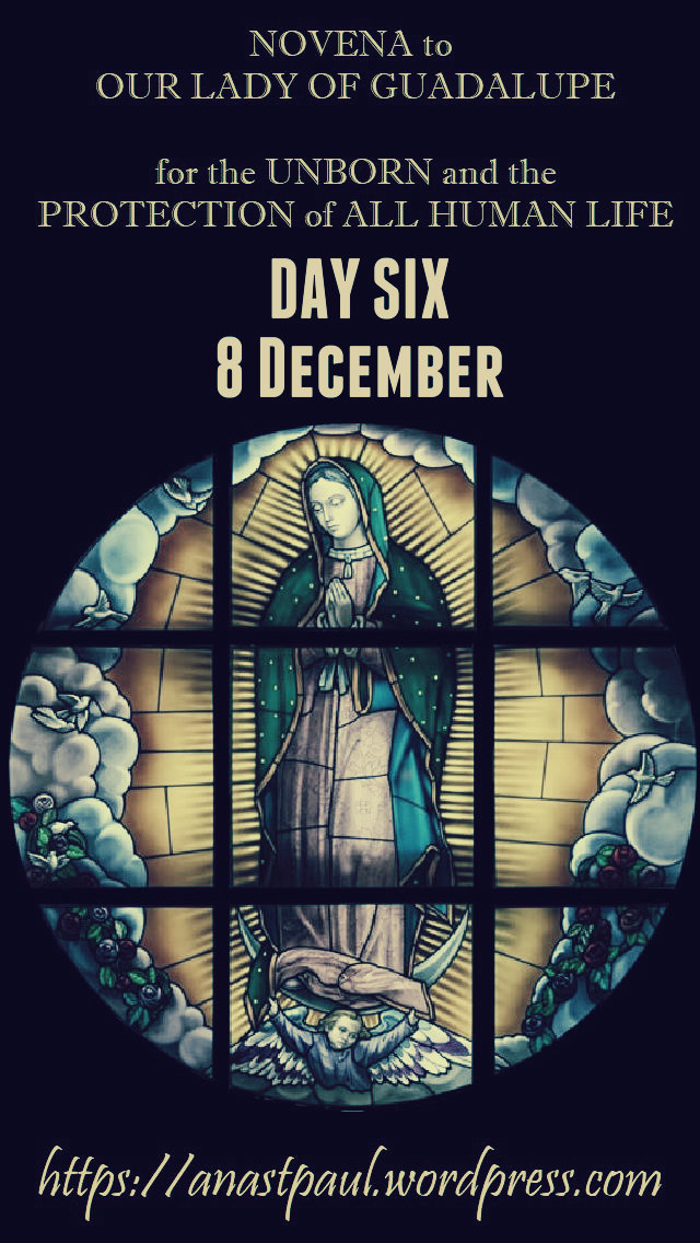 day six NOVENA OUR LADY OF GUADALUPE FOR THE UNBORN HUMAN LIFE 8dec2018