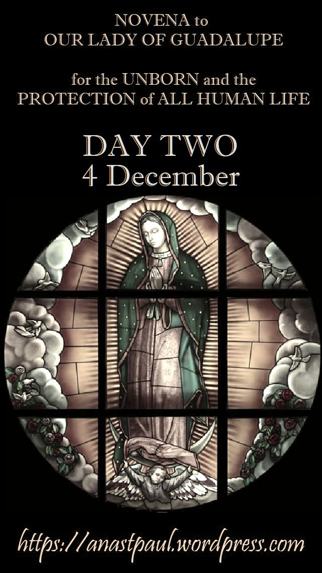 DAY TWO - NOVENA OUR LADY OF GUADALUPE FOR THE UNBORN HUMAN LIFE 4dec2018.jpg