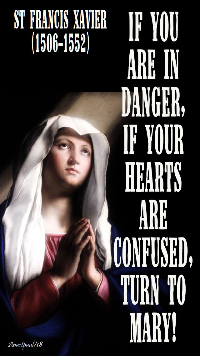 if you are in danger, if your hearts are confused, turn to mary - st francis xavier 3 dec2018