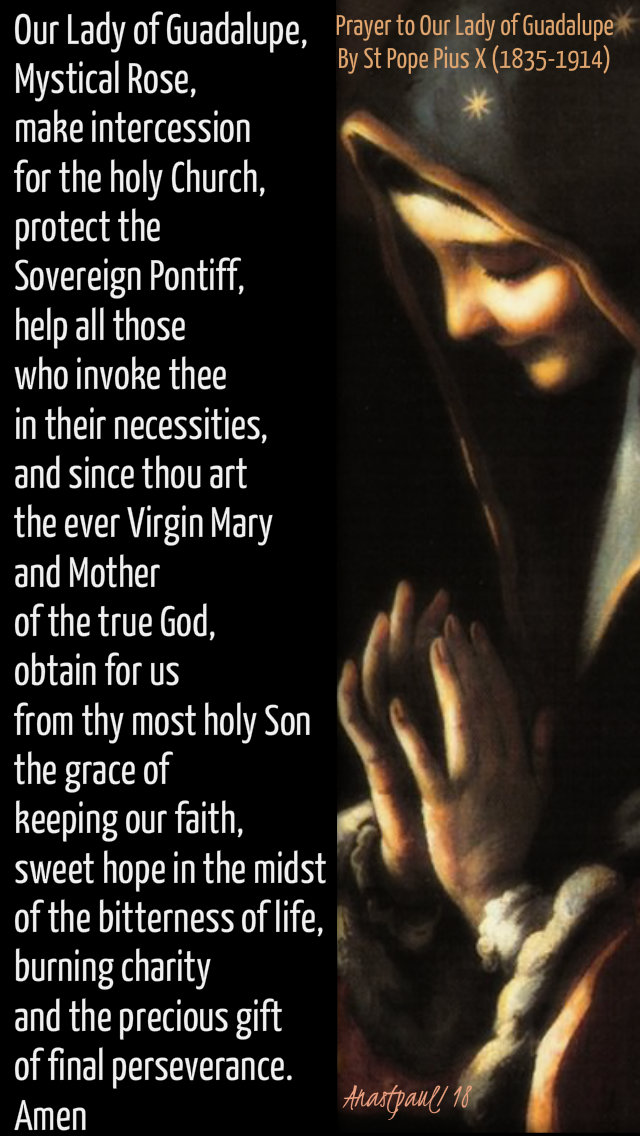 Prayer to our lady of guadalupe - by st pope pius X 12 dec 2018