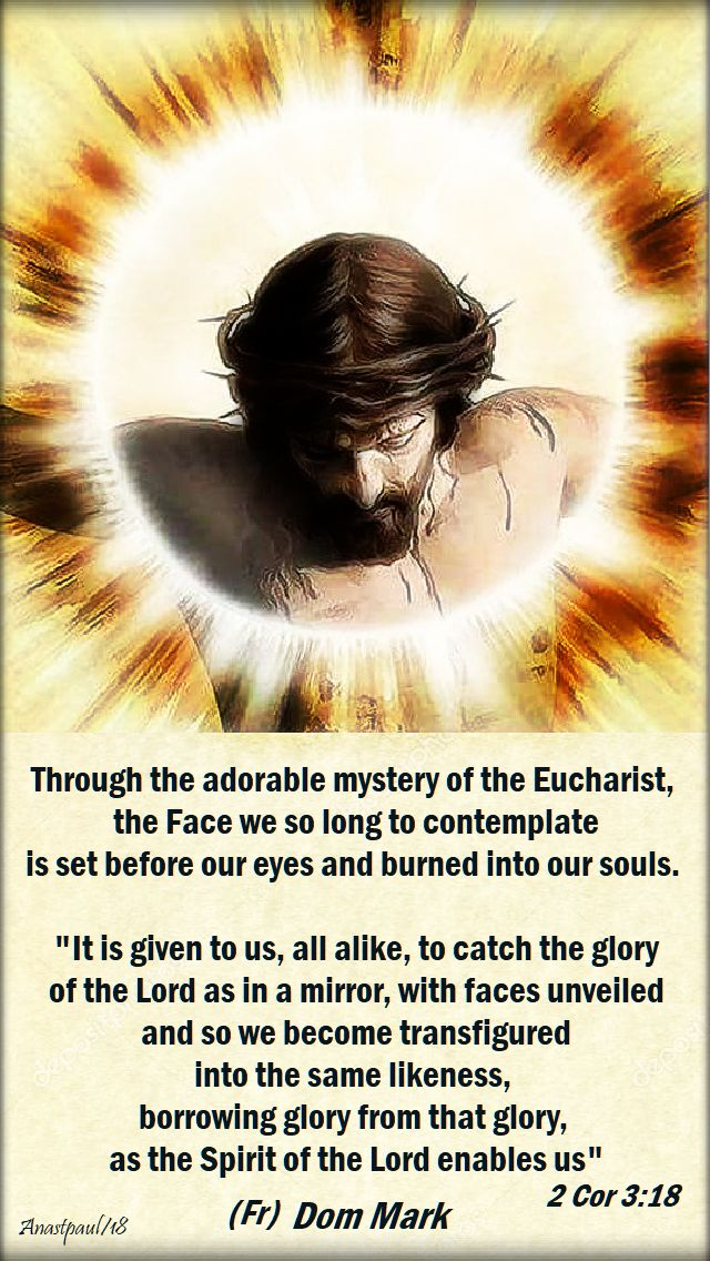 through the adorable mystery of the eucharist - dom mark vultus christi - sun reflection 2 dec 2018