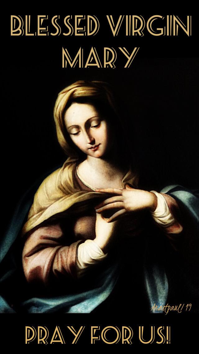 blessed virgin mary pray for us 17 jan 2019.jpg