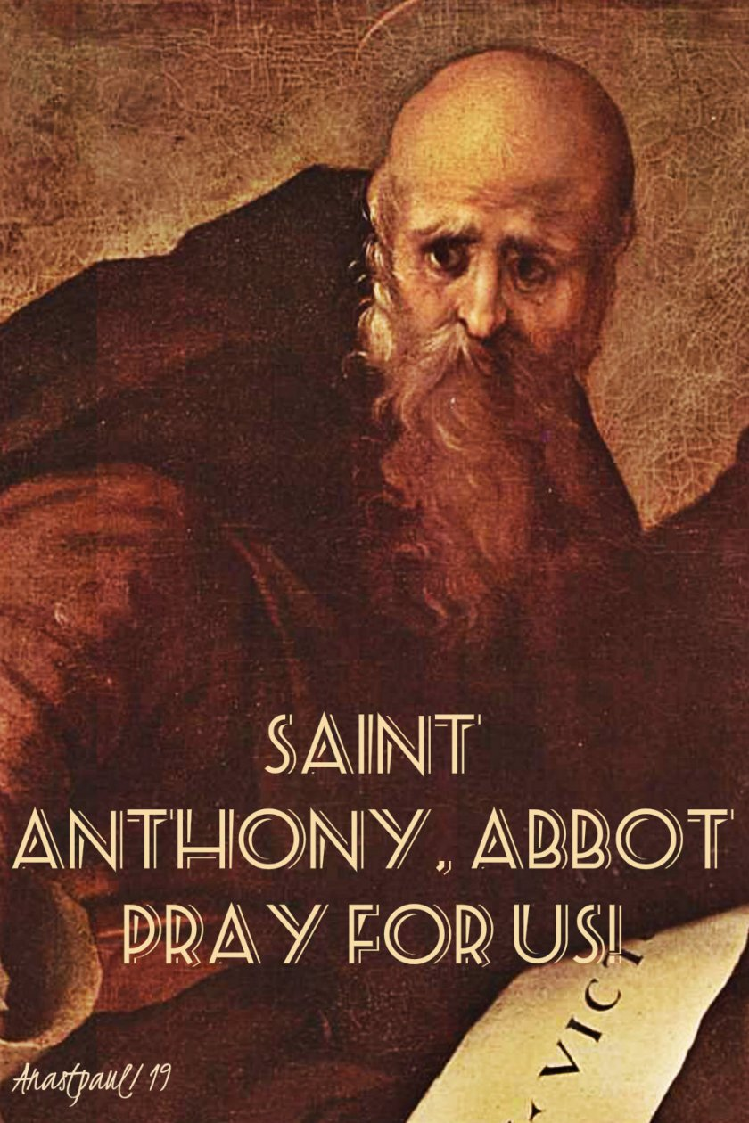 st anthony abbot pray for us 17 jan 2019.jpg
