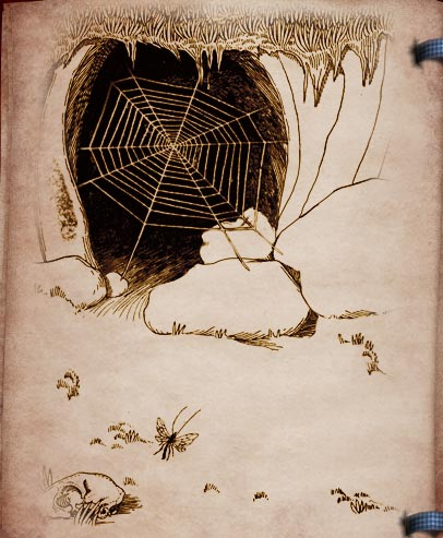 st feliz and the spider