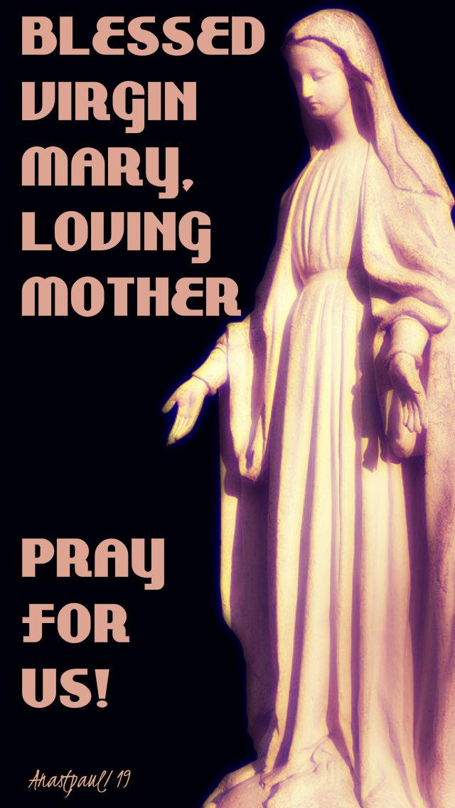 blessed virgin mary loving mother pray for us 24 feb 2019.jpg