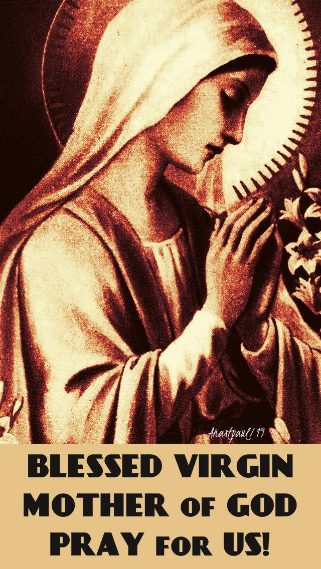blessed virgin mother of god pray for us 7 feb 2019.jpg