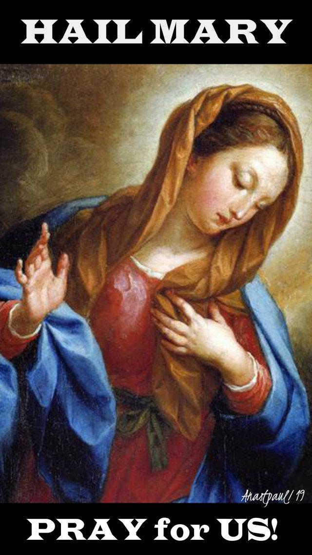 hail mary pray for us - 17 feb 2019.jpg