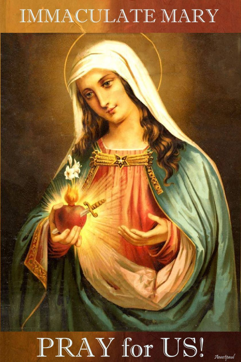 immaculate mary poray for us.jpg