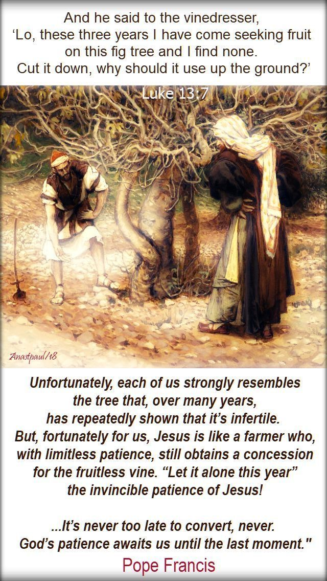luke 13 7 the fruitless fig tree - unfortunately each of us - pope francis 24 march 2019.jpg