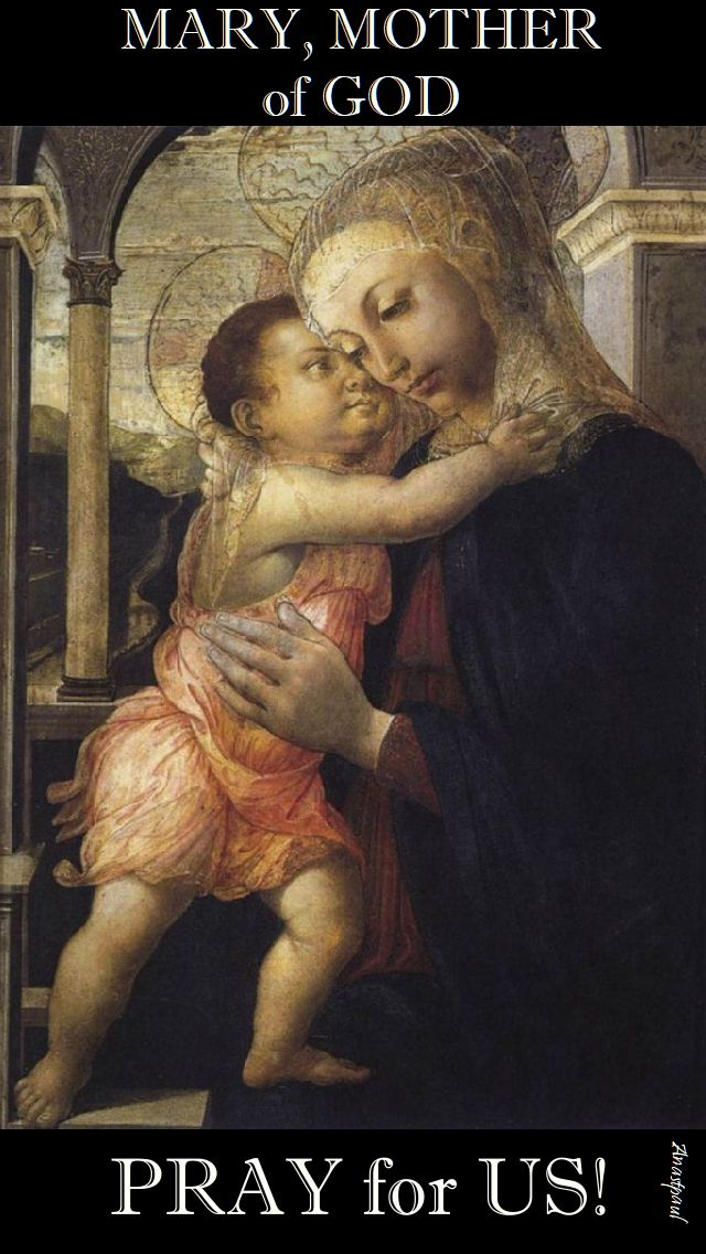 mary mother of god pray for us.jpg