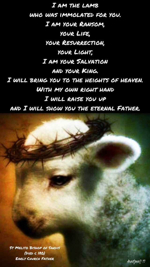 i am the lamb who was immolated for you - st melito 1 april 2019.jpg