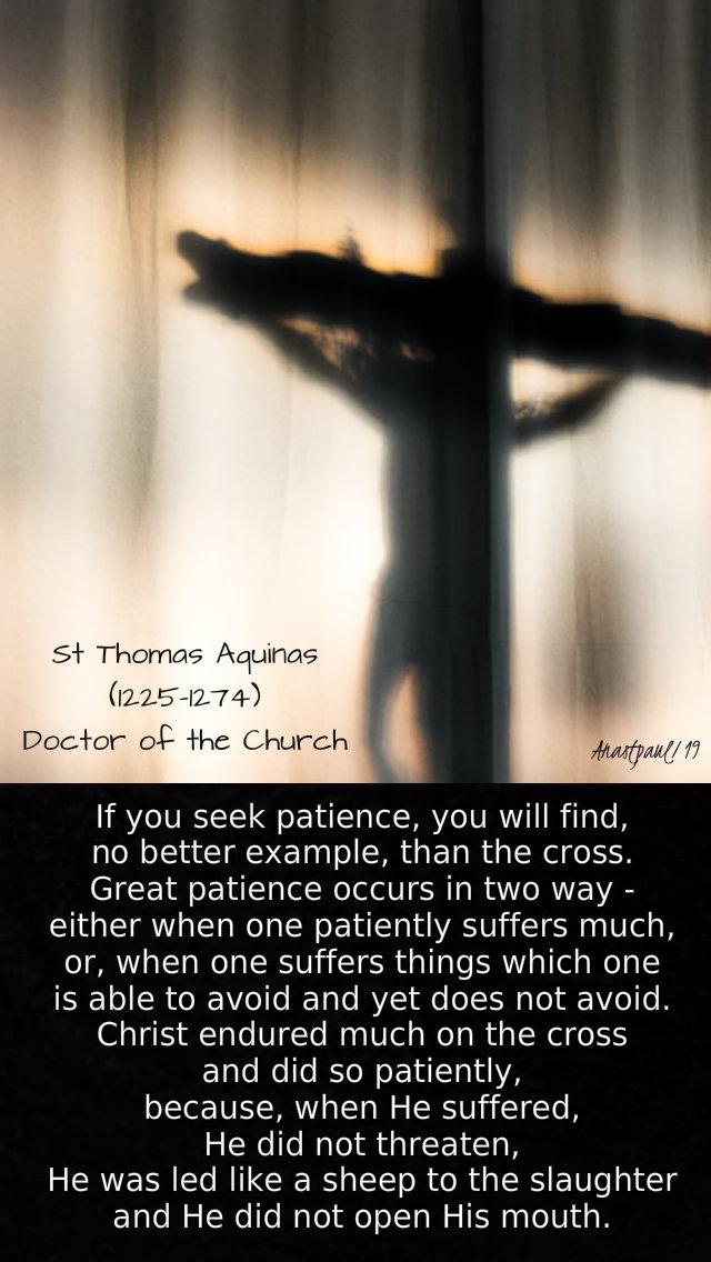 if you seek patience - st thomas aquinas - mon of holy week - 15 april 2019.jpg