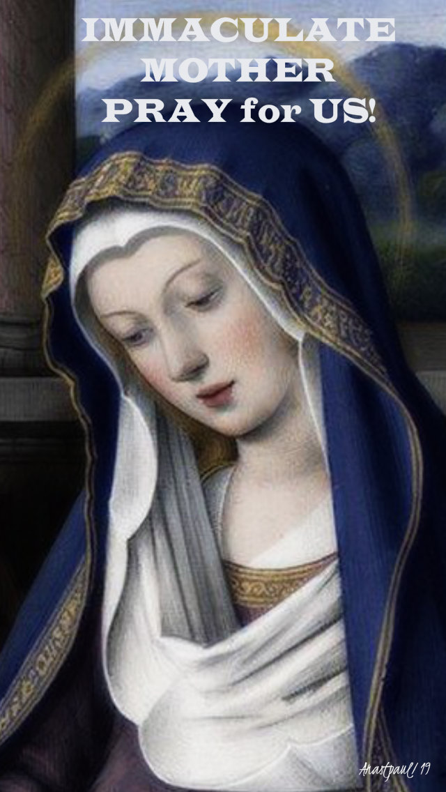 immaculate mother pray for us 13 april 2019.jpg