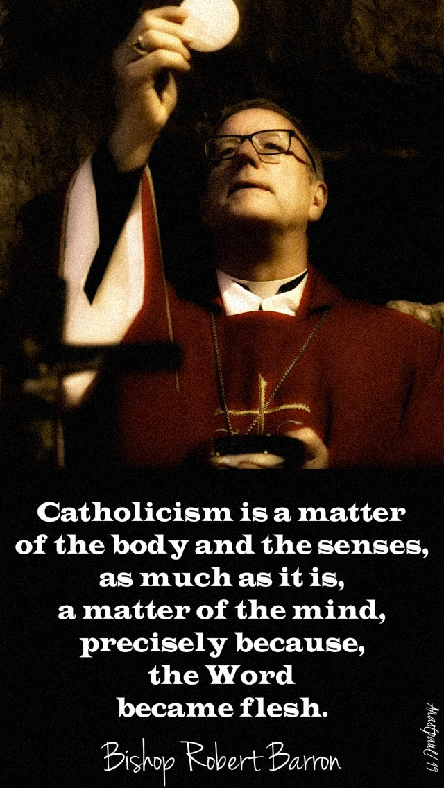 catholicism is a matter of - bishop robert barron 9 may 2019.jpg