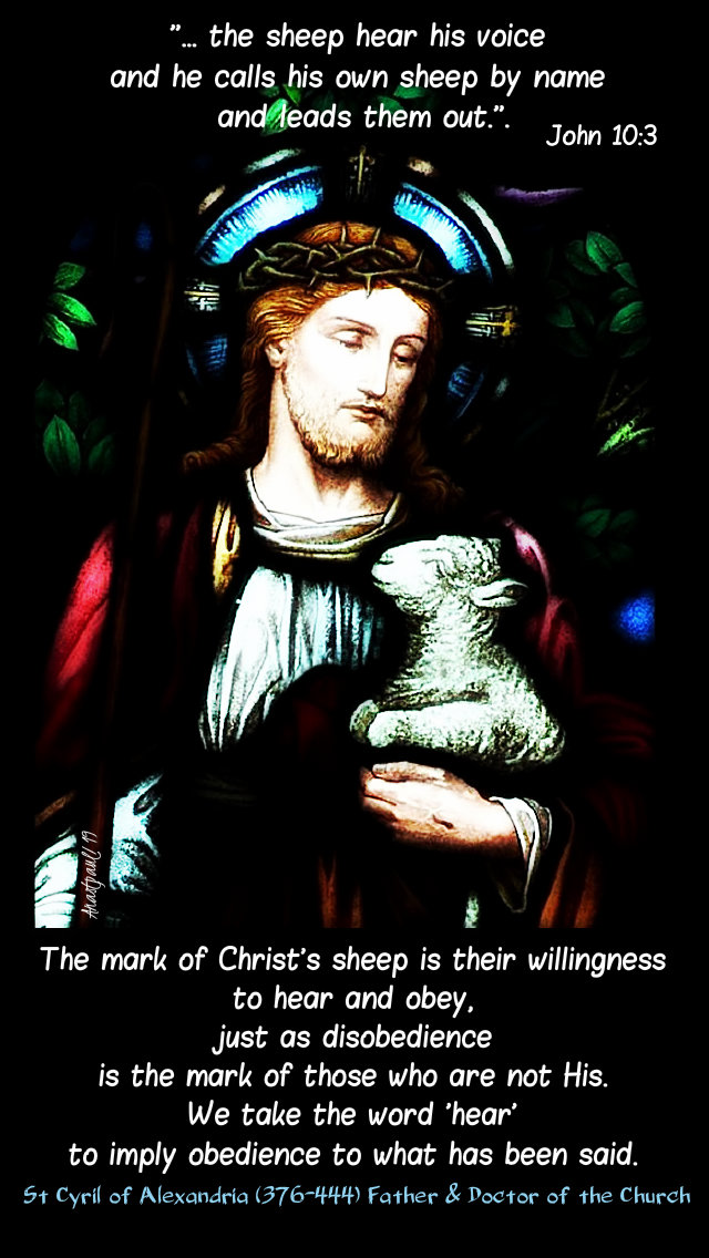 john 10 3 he calls his own sheep - the mark of christ's sheep is their willingness to hear - st cyril of alex 13 may 2019.jpg