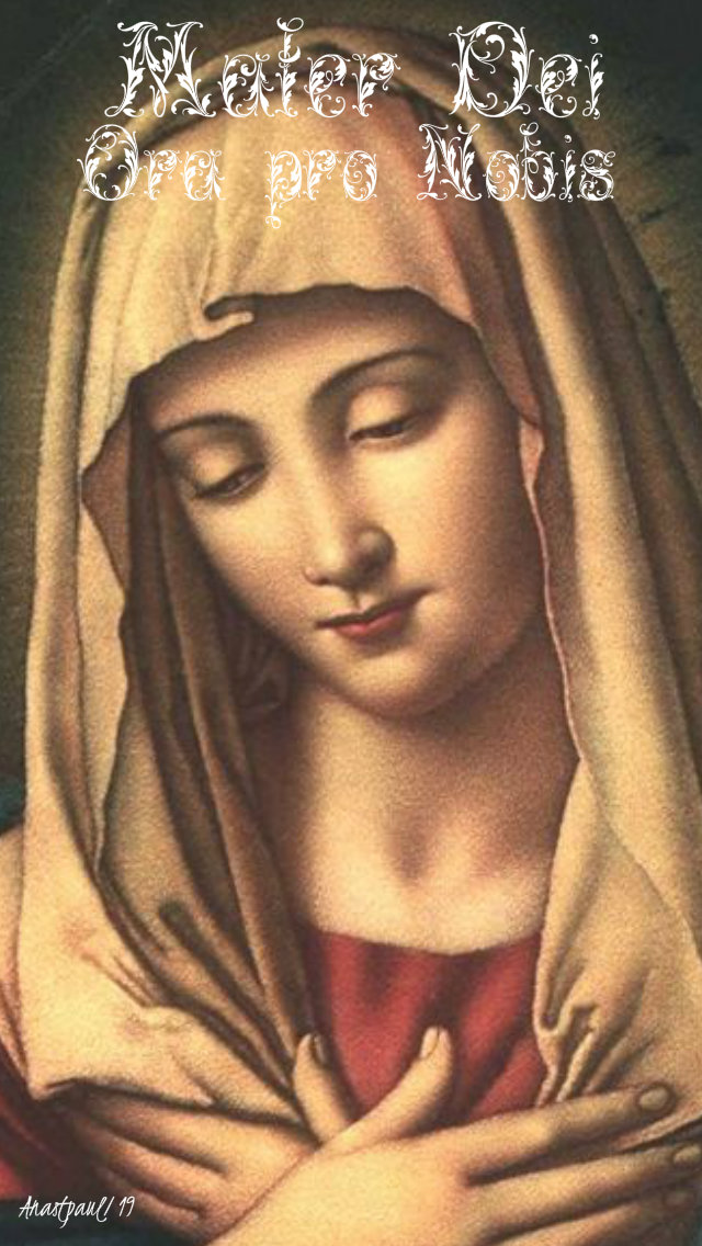 mater dei mother of god pray for us 12 may 2019