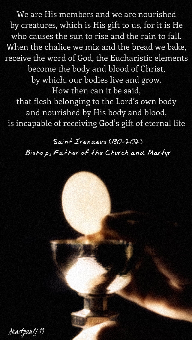we are his members and we are nourished - st ireneus on the eucharist and resurrection 9 may 2019.jpg
