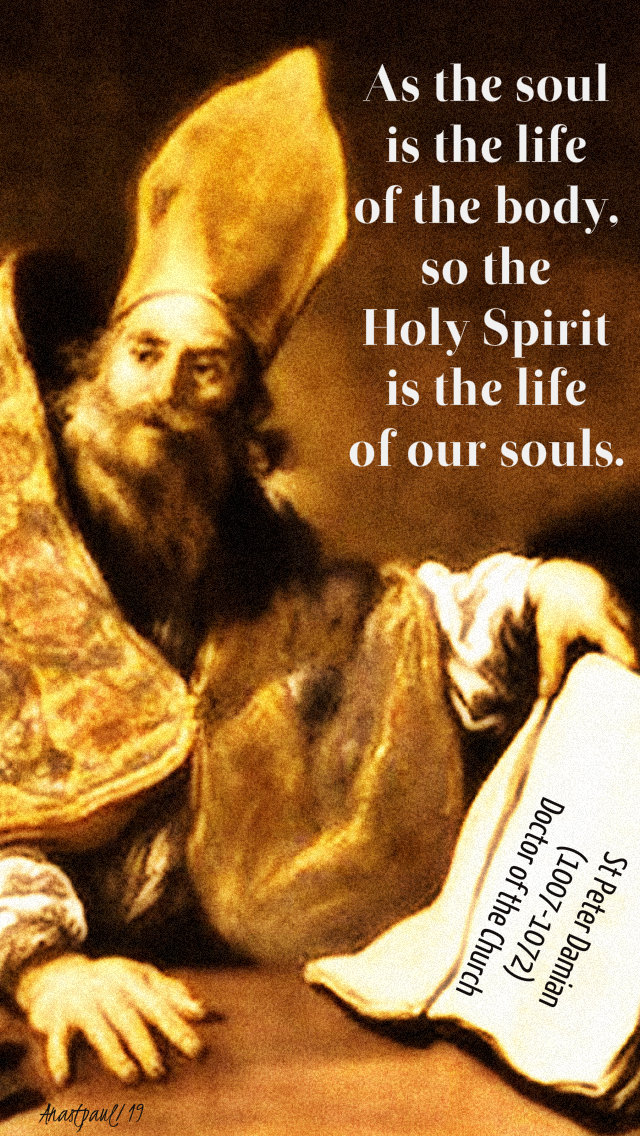 as the soul is the life of the body so the holy spirit is the life of the soul - st peter damian 2 june 2019.jpg