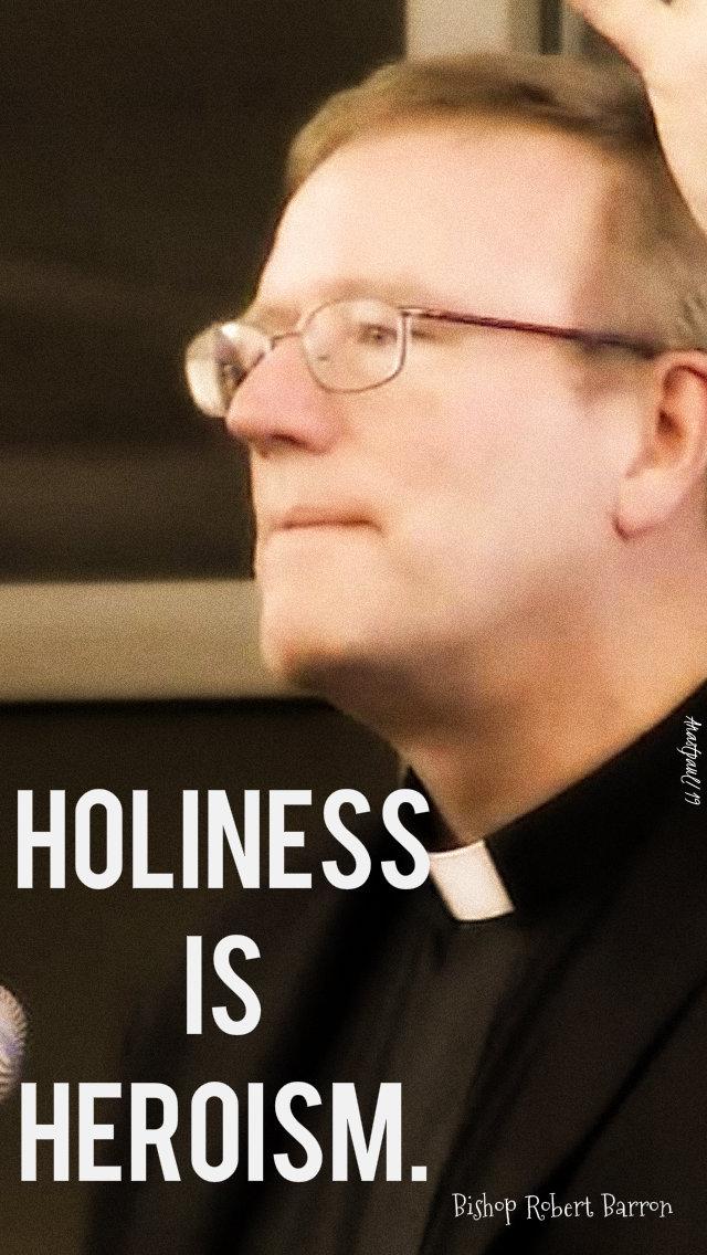 holiness is heroism robert barron 30 june 2019