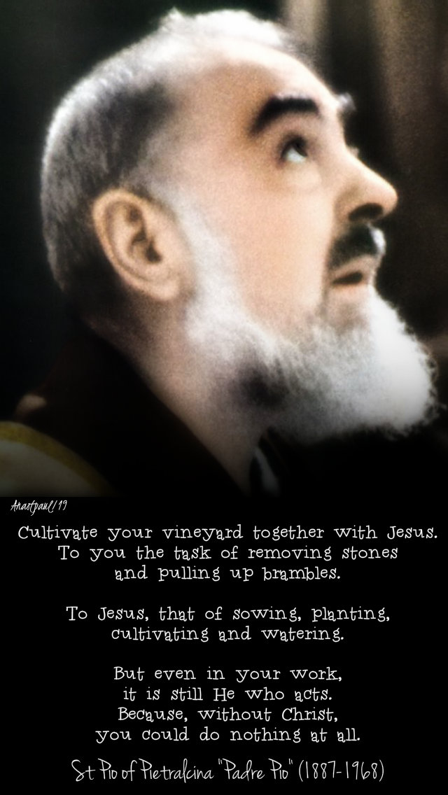 cultivate your vineyard togther with jesus - st padre pio - 26 july 2019.jpg