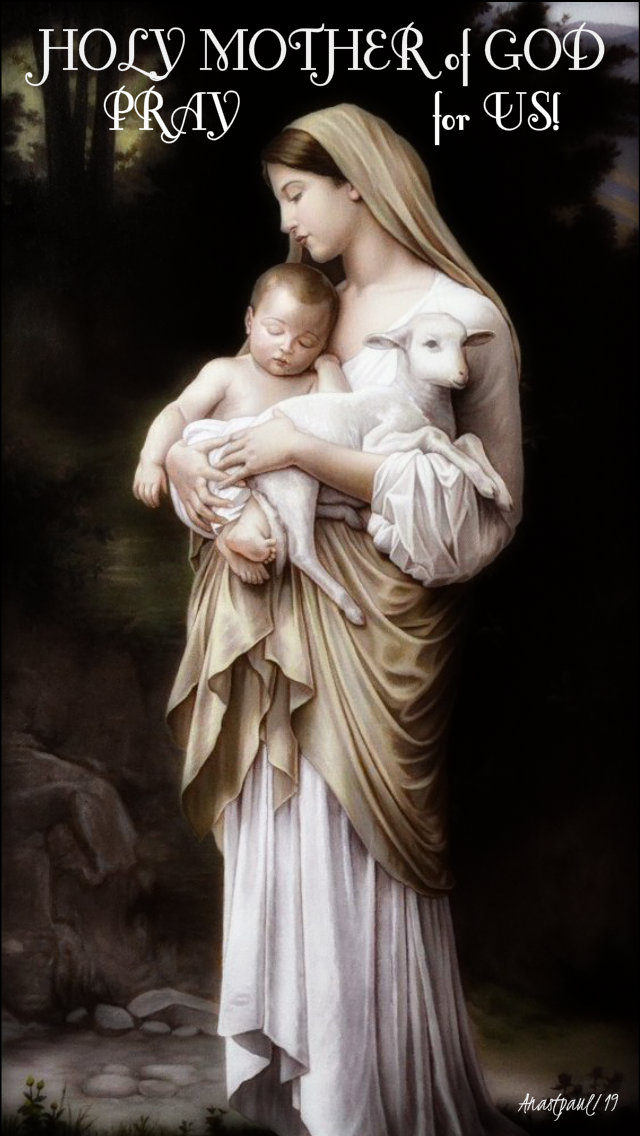 holy mother of god pray for us 23 july 2019