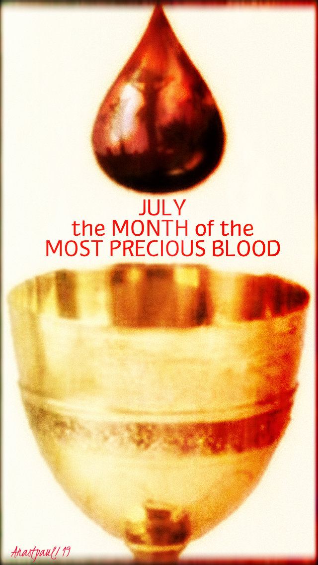 july the month of the most precious blood - 1 july 2019.jpg