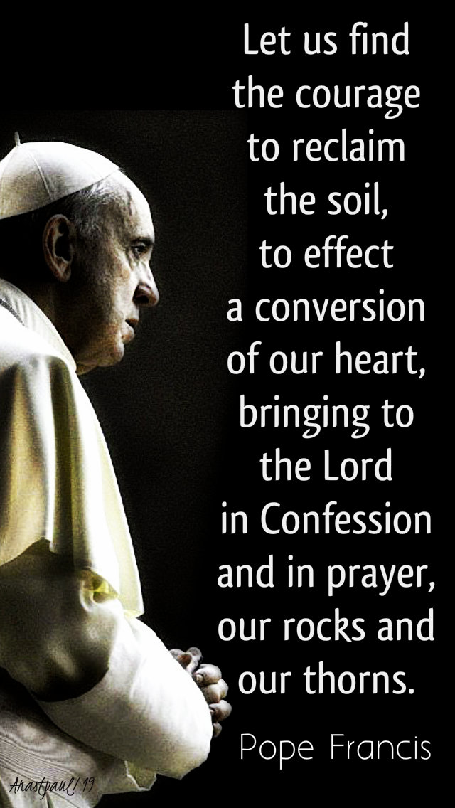 let us find the courage to reclaim the soil - pope francis 24 july 2019.jpg