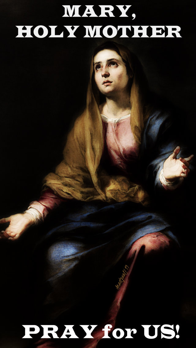 mary holy mother pray for us 20 july 2019