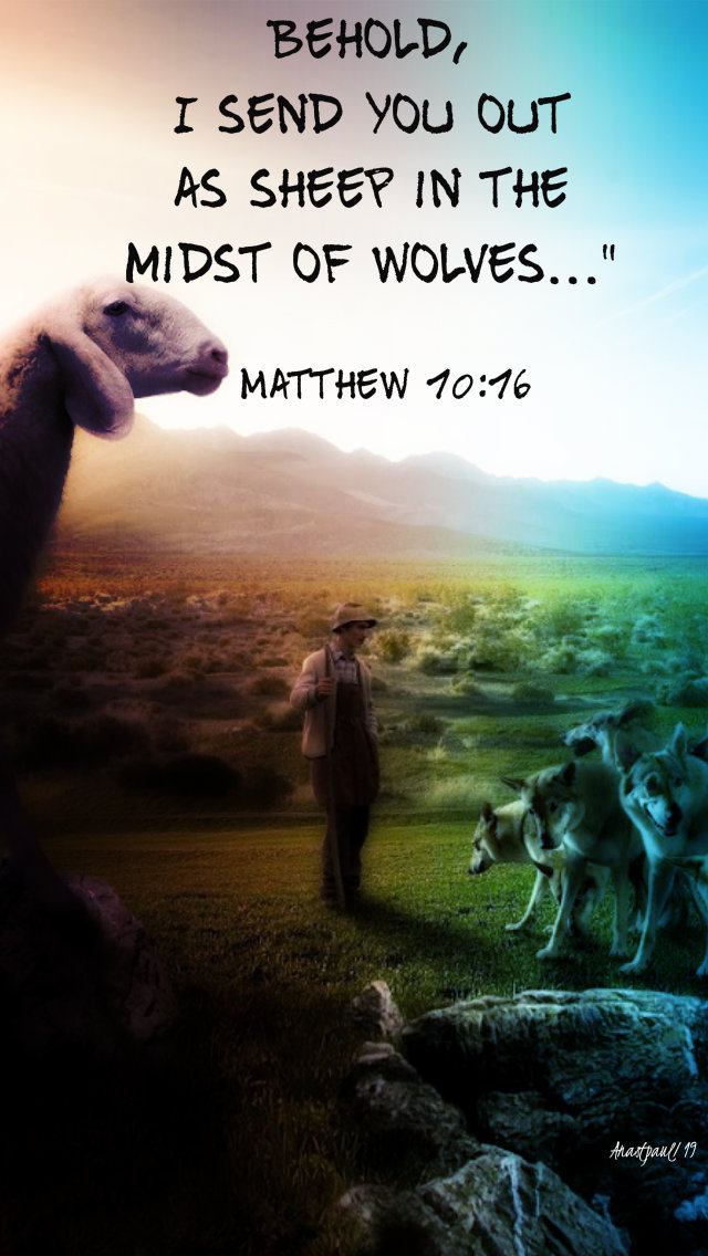 matthew 10 16 behold i send you out as sheep - 12 july 2019